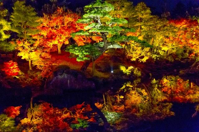 宮島の紅葉のライトアップでのフェリー時間とナイトクルージングについて